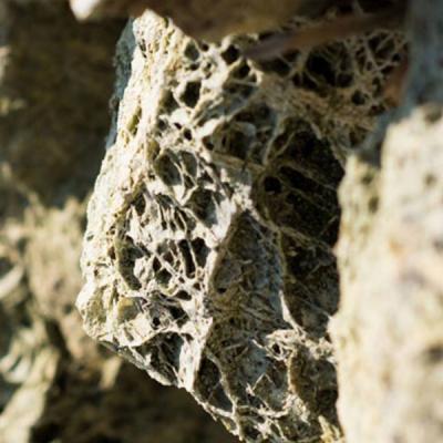 ✅ Kamień Spoggos Grys - stonesgarden.pl ®