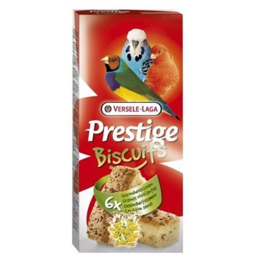 ✅VL-Biscuit Condition Seeds 70g - Biszkopty Kondycjonujące Dla Ptaków (6 sztuk)