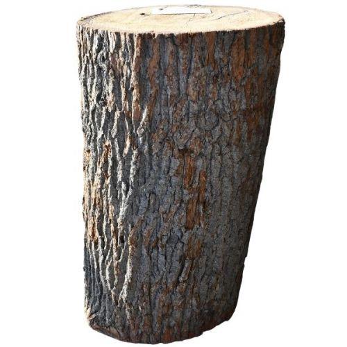 Pień Drewno Dębowe